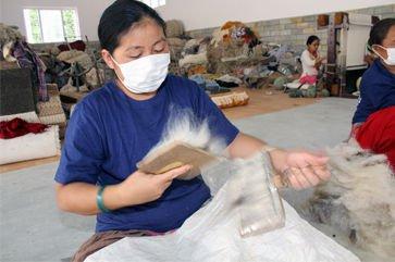 Wool Carding